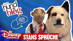 HUND MIT BLOG - Stan's Sprüche | Disney Channel App 📱
