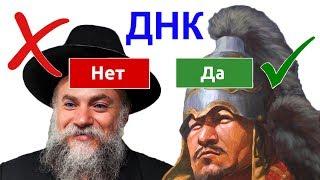 Почему еврейского гена НЕ существует, а Чингизхан...таки Да! (+Клёсов) (30 июл. 2019 г.)