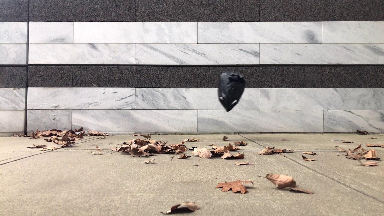 Cleveland Museum of Art (Black Plastic Bag)