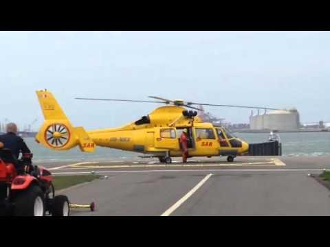 AS 365 dauphin landing (NHV)