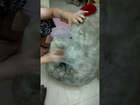 How to clean big soft toys at home in 5 mins ?