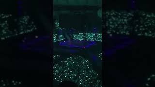 Cover images [FANCAM] 180726 SHINee -Sunny Side (SHINee Special Fan Event)