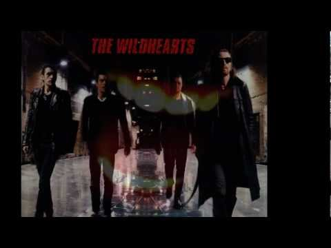 THE WiLDHEARTS  - Soundog Babylon