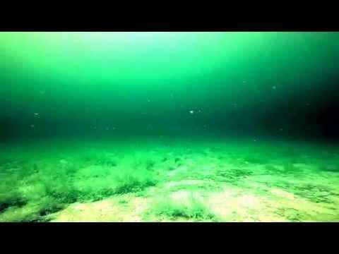 Lake Mohave scuba diving Nevada Beach