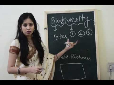 Biodiversity-Types,Importance and loss of Biodiversity