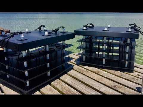 The Mini Reef Offers Solutions to Coastal Water Problems.