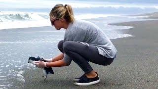 Liberando a un pingüino