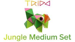 Trido Jungle Medium Set - How to build a Lizard