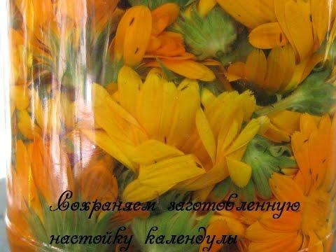 Календулы настойка (Calendulae tinctura) Инструкция по