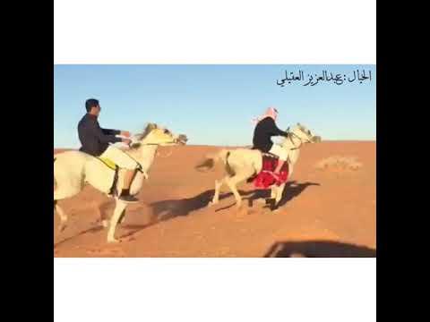 الخيال عبدالعزيز بن سعود العقيلي الخالدي من أهالي الحلوة .