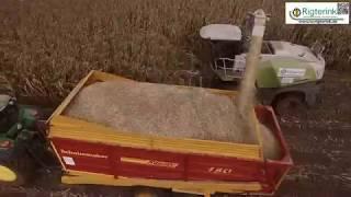 Lohnunternehmen Rigterink aus Nordhorn - Mais häckseln 2017