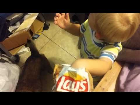 Lays Cappuccino flavored chips reviewed by a 2 year old