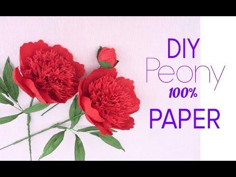DIY Red Peony from paper - HMC Art