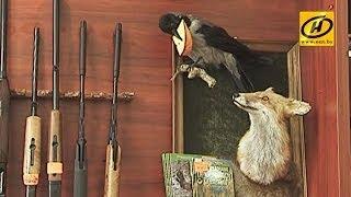 Изменения в правилах охоты и рыбалки в Беларуси коснутся профессионалов и любителей(Охота и рыбалка по новым правилам. Изменения, которые вступают в силу на этой неделе, коснутся как профессио..., 2014-06-23T18:46:12.000Z)