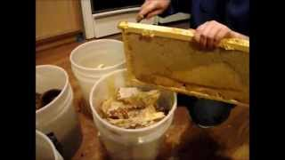 winter beekeeping episode 4, Recovering What We Can