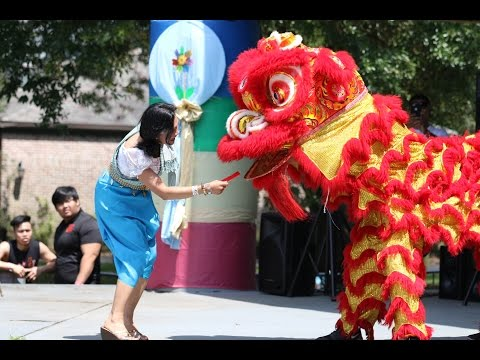 Asian Pacific American Society Festival at Audubon Zoo