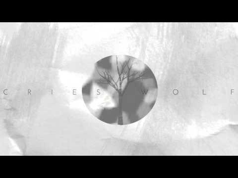 Cries Wolf - Jeffrey Brown