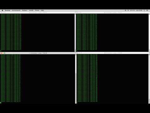 DDOS (mac)