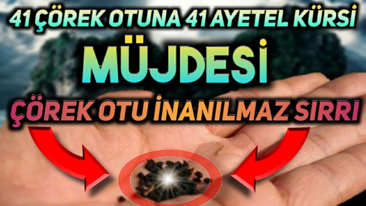 41 ÇÖREK OTUNA 41 AYETEL KÜRSİ OKUYUN BAKIN NELER OLUYOR! (Bu Fırsat Kaçmaz!!)