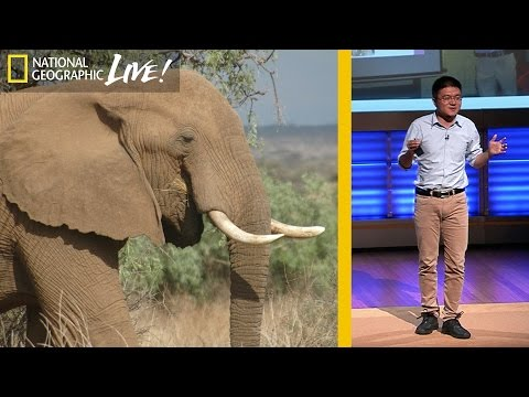 National Geographic Live! - Bringing China and Africa Together to Save Elephants   Nat Geo Live