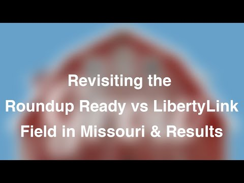 Revisiting the Roundup Ready vs LibertyLink Field in Missouri & Results