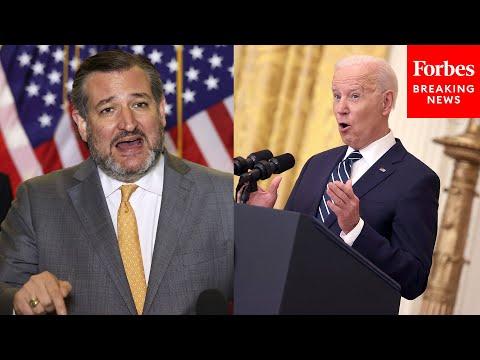 Ted Cruz tears apart Biden nominee: an