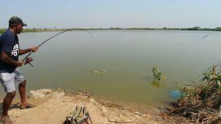 Fish hunting||Fishing For Rupchanda Fish Like Piranha Fish
