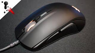 SteelSeries Rival 110 Review (VS Rival 100)