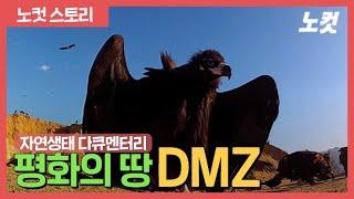 [노컷TV] DMZ - 자연생태다큐 Full Ver.