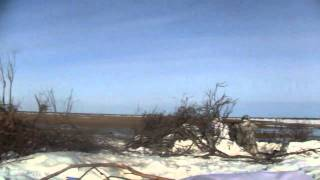 Охота на гусей в Якутии Устьянье