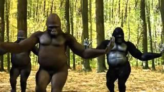 Прикол. Танец обезьян(Больше смешного видео на http://rufun.net/fun/1795/, 2015-04-08T14:39:21.000Z)