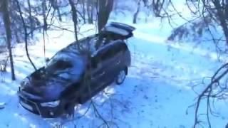 Прикол! Медведь угнал машину!