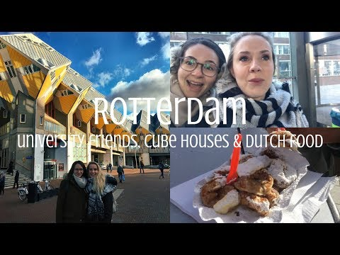 ROTTERDAM   University Friends, Cube Houses, & Dutch Food   Vlog #20