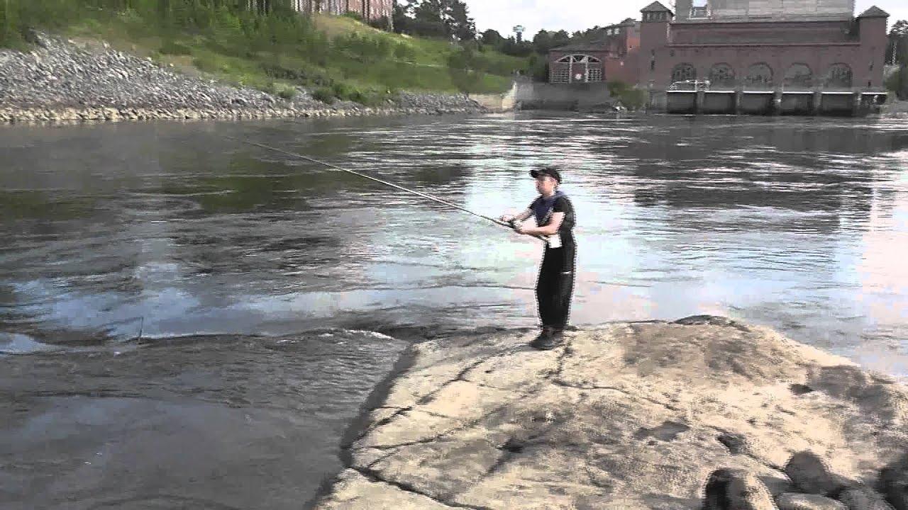 Laxfiske I Alvkarleby 003 Mts Youtube