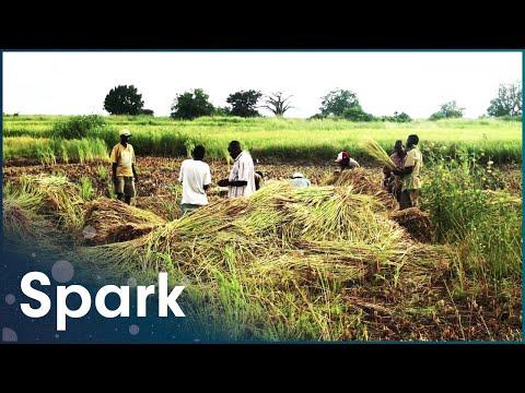 Atomic Africa: Clean Energy's Dirty Secrets (Environmental Documentary) | Spark [2013]