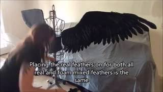 Feathering Static Wings