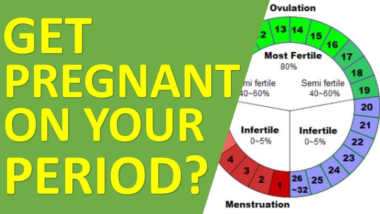 Can You Get Pregnant While On Your Period? - YouTube