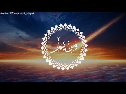 القارئ محمد النقيب سورة مريم كاملة للقارئ محمد النقيب