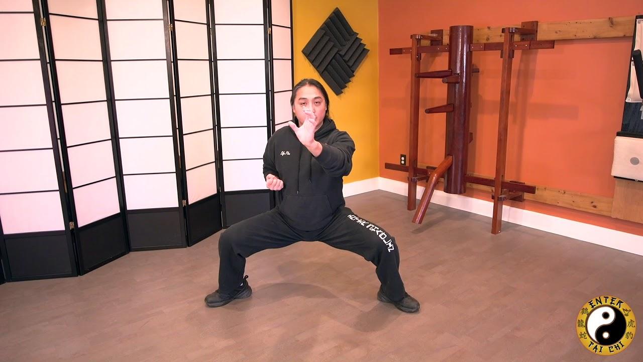 tiger style kung fu pdf