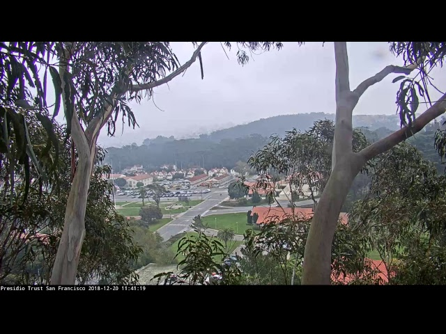 Presidio SF Live Webcam