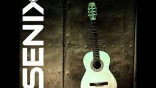 Senix - Confusion