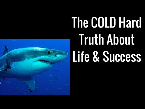 The COLD Hard Truth About Life & Success