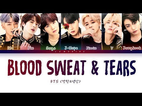 BTS - Blood Sweat & Tears (방탄소년단 - 피 땀 눈물) [Color Coded Lyrics/Han/Rom/Eng/가사]