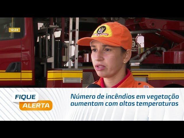 Número de incêndios em vegetação aumentam com altas temperaturas