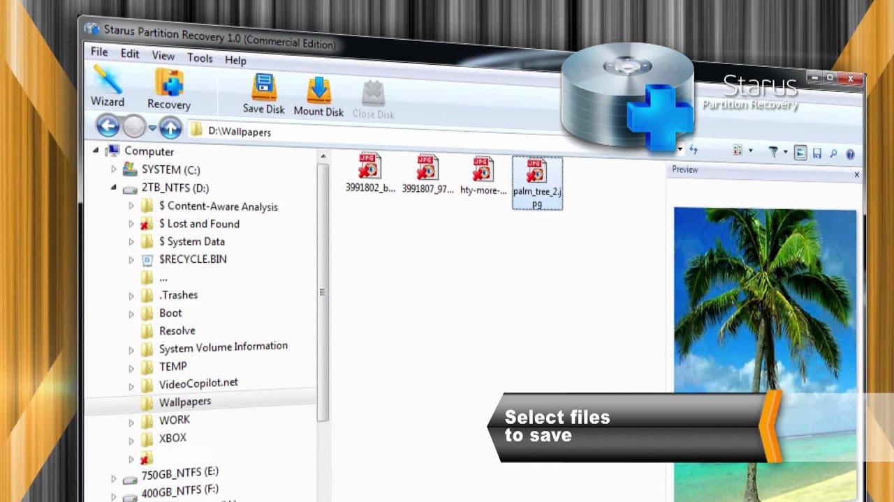 stargus data files