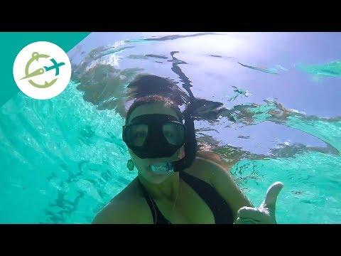 MSC Divina Cruise Miami, St Maarten, Puerto Rico, Bahamas