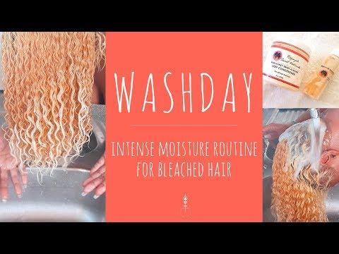 Natural Hair Wash Day Intense Moisture Routine for Bleached Hair