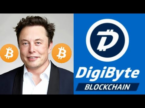 Elon musk investimento bitcoin and cryptocurrency