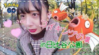 【ポケモンGO】日比谷公園にてポケ活!コイキングの巣だった!