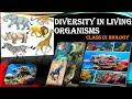 Diversity In Living Organisms: Class 9 Biology Full Chapter